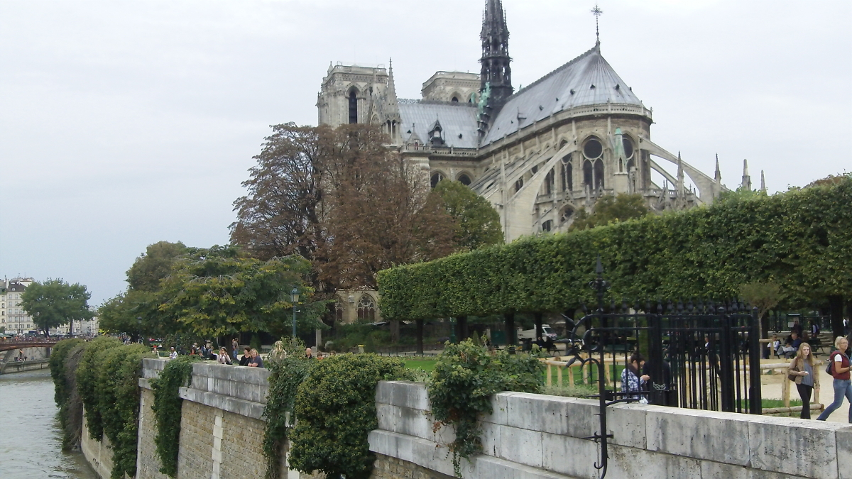 The Notre-Dame in Paris